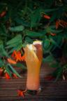 Amber_craft_brewery_piwo_rzemieslnicze_drink_russ